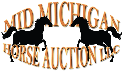 Mid Michigan Horse Auction LLC